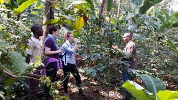 Coffee farm tour