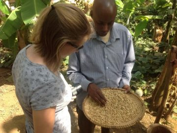 Learning about coffee-Ifulong village