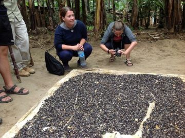 Local processing of coffee